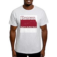 Vintage Kansas Ash Grey T-Shirt