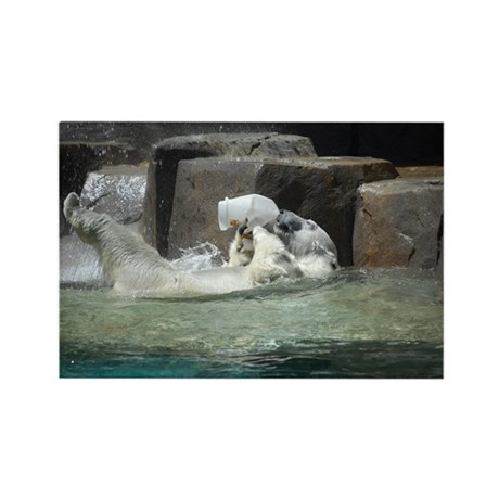 Polar Bears Rectangle Magnet (100 pack)