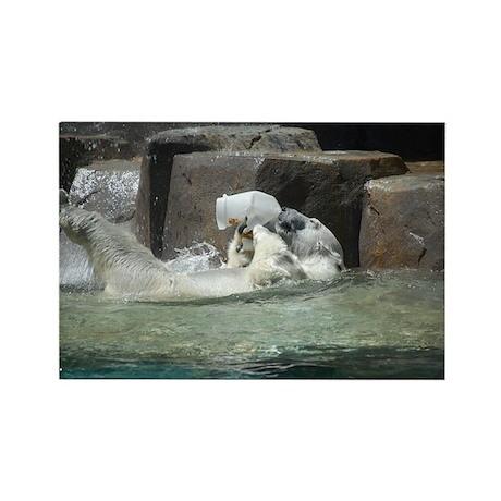 Polar Bears Rectangle Magnet