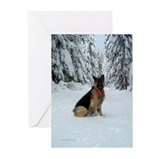 Snowy Shiloh Christmas Cards (Pk of 10)