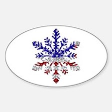 USA Snowflake Oval Decal