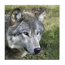 Timber Wolf Tile Coaster