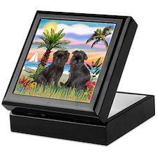 Palms - Brussels Griffon Pups Keepsake Box