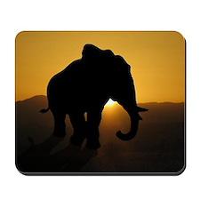 Bull Elephant Mousepad