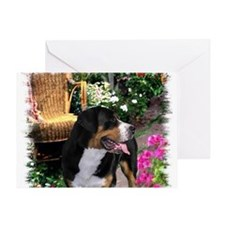 Greater Swiss Mountain Dog Greeting Card