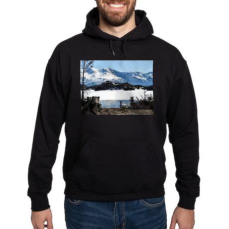 Alaska Bear Logo - Hoodie (dark)