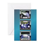 Hurricane Greeting Cards (Pk of 20)