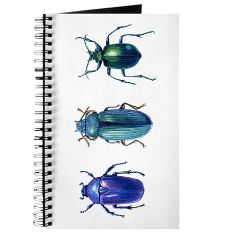 Iridescent Beetles Journal