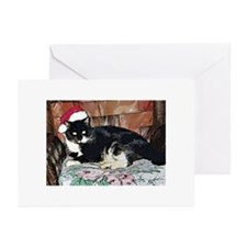 Christmas Kitty Greeting Cards (Pk of 20)