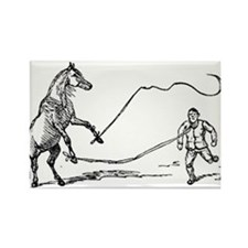 Lunging Rectangle Magnet