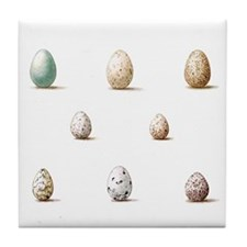 Wild Bird Egg Tile Coaster