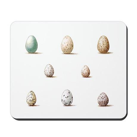 Wild Bird Egg Mousepad