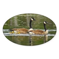 Goose Family Oval Decal