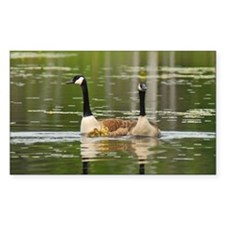 Goose Family Rectangle Decal
