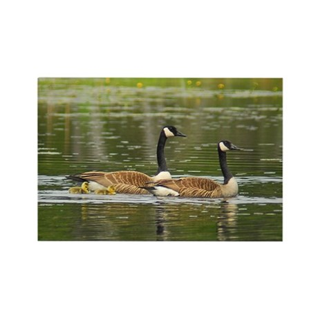Goose Family Rectangle Magnet