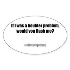 Flash me? Oval Decal