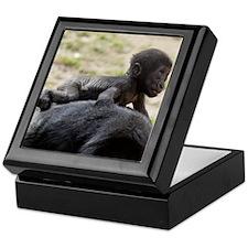 Baby Gorilla Keepsake Box