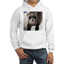 Black-footed Ferret Hooded Sweatshirt