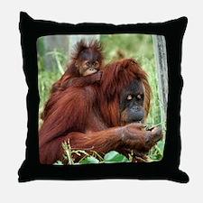 Orangutan's Throw Pillow