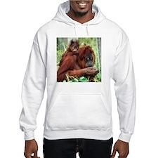 Orangutan's Hoodie
