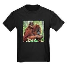 Orangutan's T