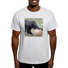 Asian Elephant T-Shirt