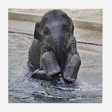 Asian Elephant Tile Coaster