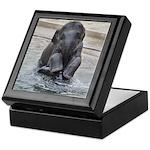 Asian Elephant Keepsake Box