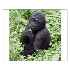 Relaxing Young Gorilla Posters