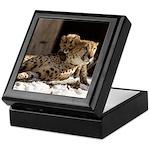 Mom and Baby Cheetah Keepsake Box
