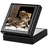 Cheetahs Square Keepsake Boxes
