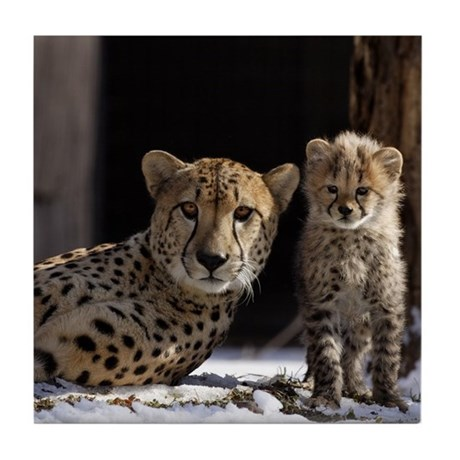 Mom and Baby Cheetah Tile Coaster