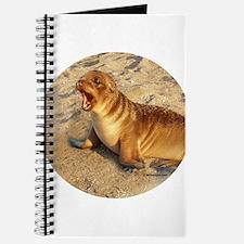 Baby Sea Lion Journal