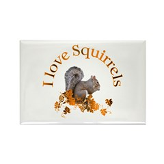 Squirrel Rectangle Magnet (10 pack)