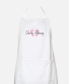 DUE IN FEBRUARY BBQ Apron
