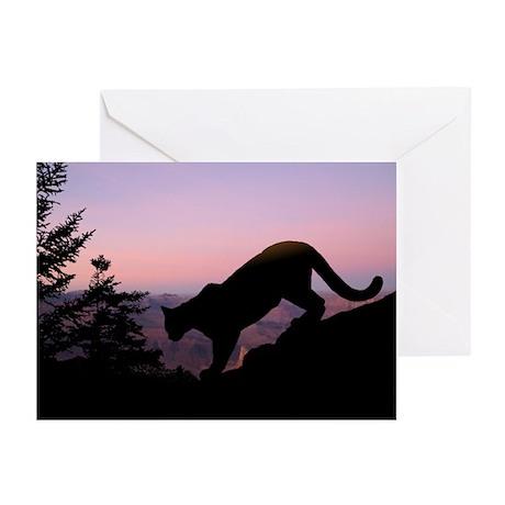Cougar Greeting Cards (Pk of 10)