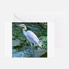 Funny Blue heron Greeting Cards (Pk of 10)