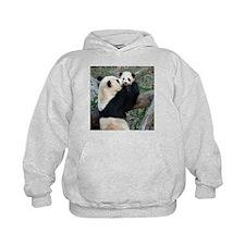 Mom & Baby Giant Pandas Hoodie