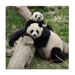 Mom & Baby Giant Pandas Tile Coaster