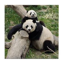 Mom & Baby Giant Pandas Tile Coaster