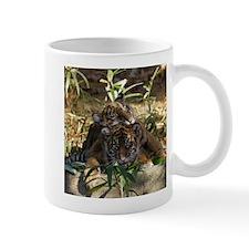 Sumatran Tigers Mug
