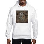 Meerkats Hooded Sweatshirt