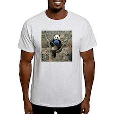 Giant Panda Light T-Shirt