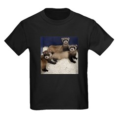Black-footed Ferrets T