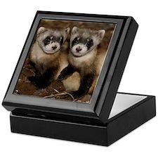 Black-footed Ferrets Keepsake Box