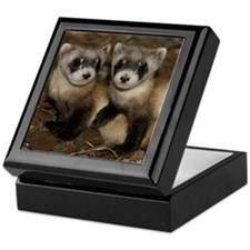 Black-footed Ferrets Keepsake Box