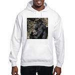 Mom and Baby Gorilla Hooded Sweatshirt