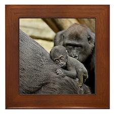 Mom and Baby Gorilla Framed Tile