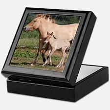 Przewalski's Wild Horses Keepsake Box