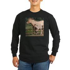 Przewalski's Wild Horses T